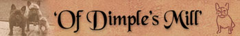Banner_of_dimples